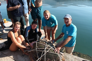 The turtle was captured by Wildlife Sense volunteers