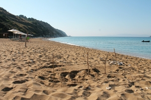 A fresh sea turtle nest on Avithos beach